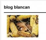 BLANCAN.jpg