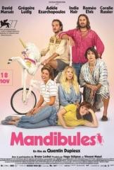MANDIBULES de Quentin Dupieux, cinéma, David Marsais, Grégoire Ludig, Adèle Exarchopoulos, India Hair, Roméo Elvis