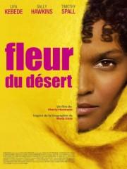 02697264-photo-affiche-fleur-du-desert.jpg