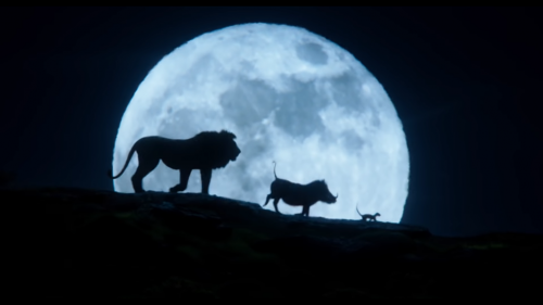 le roi lion de jon favreau,cinéma